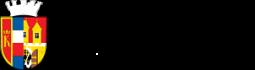 logoMCP8